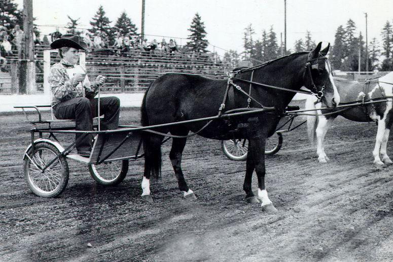 Boy competing in horse cart racing