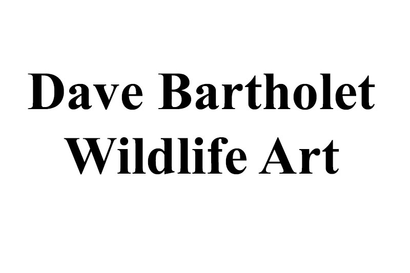 Dave Bartholet Wildlife Art