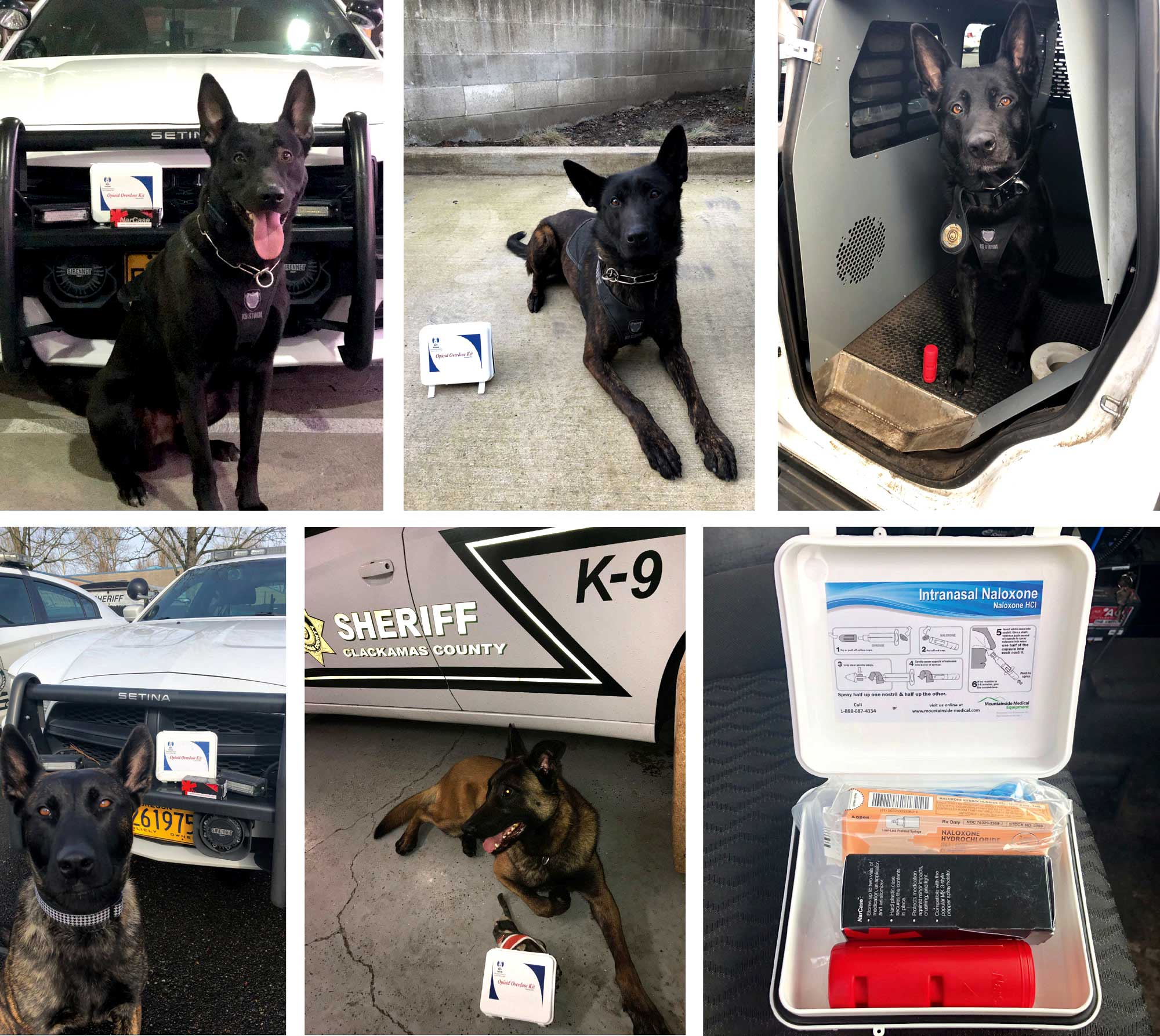 K9s and Narcan