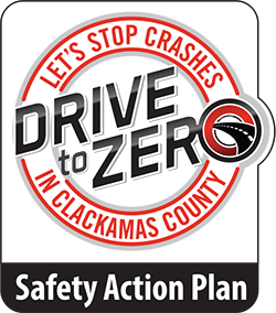Drive to Zero Safety Action Plan