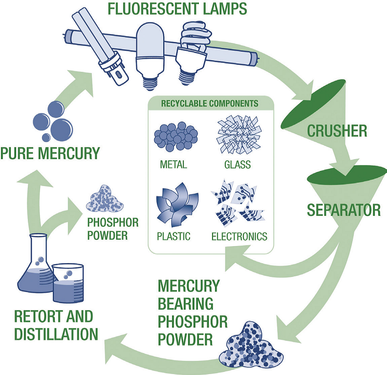 How fluorescent lights are recycled
