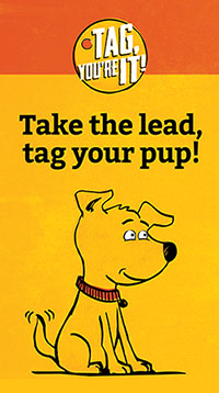 Take the lead, tag your pup!