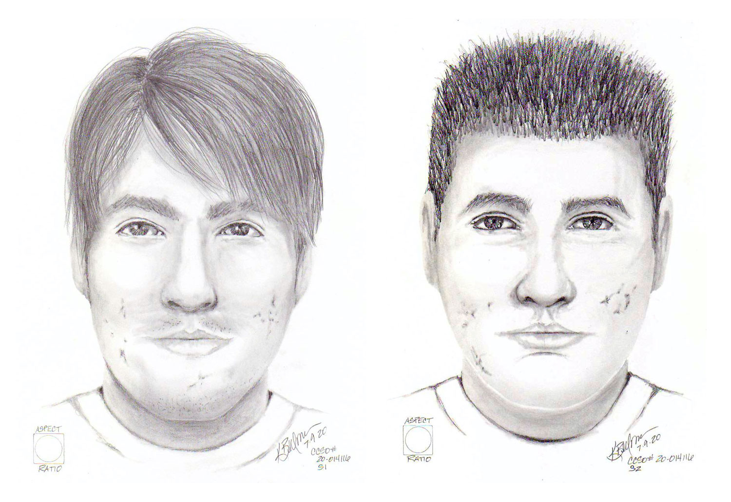 Suspect sketches