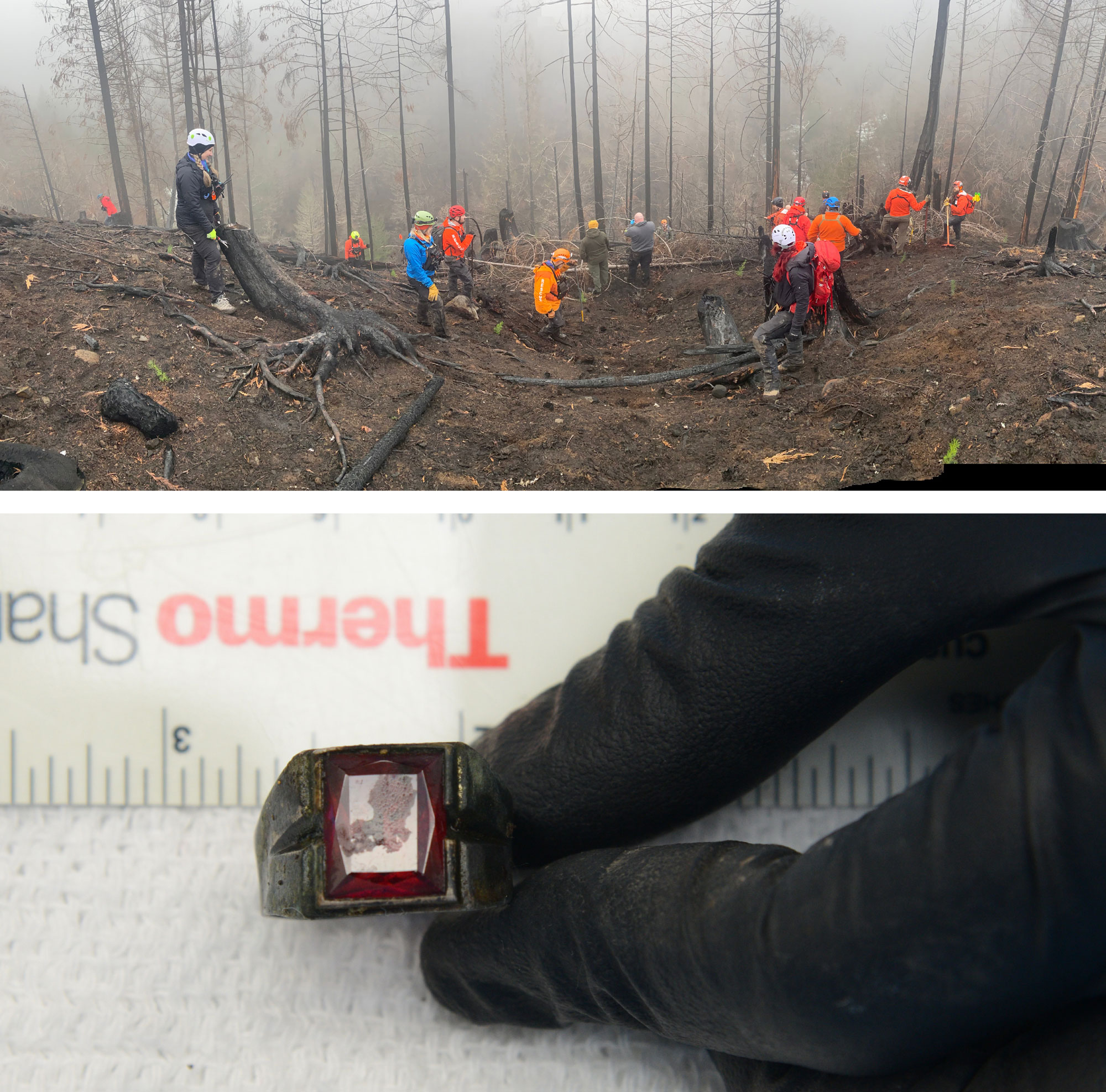 Searchers and recovered ring